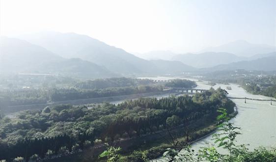 因疫情越南木材產品加工商調整生產結構
